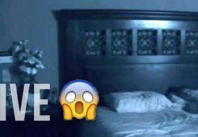 Best Ghost Movies